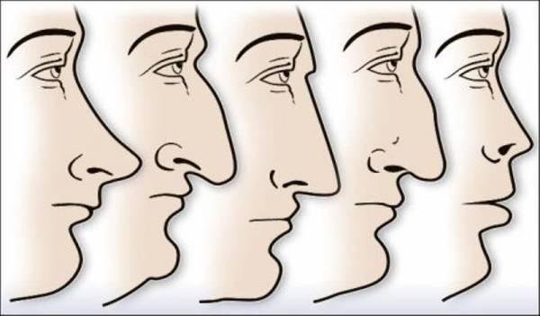 شخصیت شناسی از روی فرم بینی و چهره اشخاص